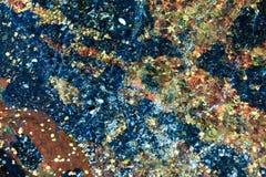 абстрактная предпосылка Раковины в воде стоковое изображение