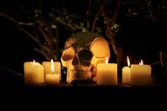 абстрактная предпосылка halloween Стоковые Изображения RF