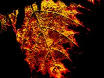 Абстрактная природа Стоковые Изображения
