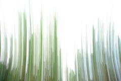 Абстрактная природа Стоковые Фотографии RF