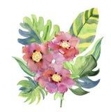 Абстрактная рука акварели покрасила предпосылки с листьями и цветками, Стоковое Изображение RF