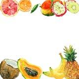 Абстрактная рука акварели покрасила предпосылки с тропическими плодоовощами, Стоковая Фотография