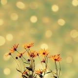 Абстрактная сверкная предпосылка с цветками стоковое фото rf