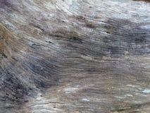 Абстрактная серая деревянная текстура Древесина выдержанная темнотой под расшивой BR Стоковая Фотография