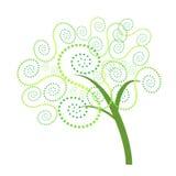 Абстрактная спиральная иллюстрация vetor дерева Стоковое Изображение