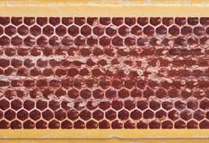 абстрактная спичка коробки предпосылки Стоковое Изображение