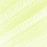 Абстрактная творческая предпосылка картины лист ладони Стоковое Изображение RF