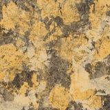 Абстрактная творческая предпосылка от листового золота Стоковое Фото