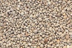 Абстрактная текстура камня моря Камешки моря Стоковая Фотография