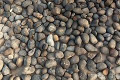 Абстрактная текстура камня моря Камешки моря Стоковая Фотография RF