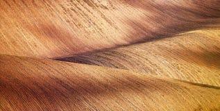 Абстрактная текстура картины свертывать волнистые поля весной Sprin Стоковая Фотография RF