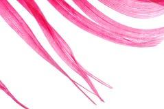 абстрактная текстура красного цвета пера Стоковые Фотографии RF