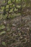 абстрактная текстура песчаника wheathered Стоковые Изображения RF