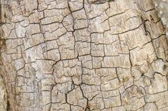 абстрактная текстура предпосылки деревянная Стоковое Фото