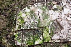 Абстрактная текстура спада здания Стоковые Фотографии RF