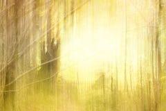 абстрактная текстура Стоковые Фото