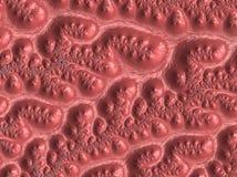 Абстрактная текстурированная картина фрактали коралла, 3d представляет для дизайна и развлечений Предпосылка для брошюры и плакат стоковое фото rf