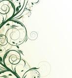 абстрактная флористическая иллюстрация Стоковая Фотография RF