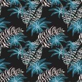абстрактная флористическая картина безшовная Голубые цветки, белизна выходят на черную предпосылку Стоковое Фото