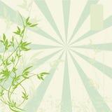 абстрактная флористическая япония традиционная Стоковое Изображение RF