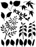 абстрактная форма листьев элементов Иллюстрация штока