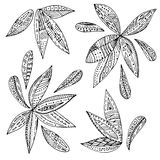 Абстрактная форма расцветки Стоковая Фотография