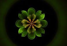 Абстрактная форма фрактали цветка Стоковое Изображение