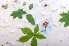 Абстрактная флористическая предпосылка в типе сбора винограда цветки на старой предпосылке акварели Стоковые Изображения RF