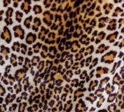 Абстрактная часть взгляда предпосылки меха ягуара Стоковая Фотография RF