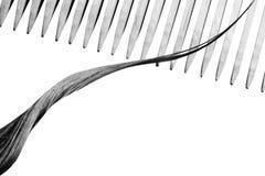 Абстрактная черно-белая предпосылка с волосами и деревянным гребнем макрос стоковые изображения