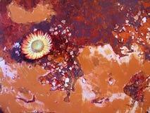 абстрактная handpainted текстура Стоковое Фото