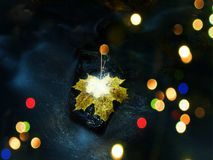 абстрактное влияние Река осени Кленовый лист смерти желтый на камне базальта в холодной воде реки горы Стоковые Фотографии RF