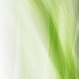 Абстрактное зеленое eco развевает квадрат Стоковая Фотография
