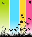 абстрактное знамя флористическое Стоковое фото RF