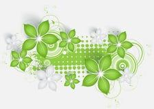 абстрактное знамя флористическое Стоковые Изображения RF