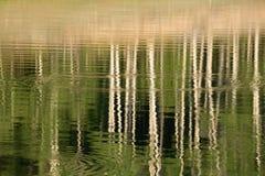 Абстрактное изображение отраженных деревьев и воды осины струится на поверхности озера в лете Стоковое фото RF