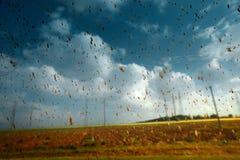 Абстрактное изображение пакостных падений дождя на стеклянной концепции экологичности проблем загрязнения окружающей среды Стоковые Изображения RF