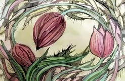 Абстрактное красивое красочное изображение тюльпанов Стоковое Фото