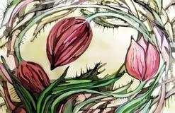 Абстрактное красивое красочное изображение тюльпанов Стоковые Изображения RF
