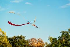 Абстрактное красочное летание змея в голубом небе Стоковое Изображение RF