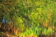 Абстрактное отражение дерева в реке Стоковые Изображения