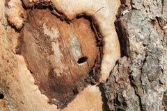 абстрактное сердце Стоковая Фотография