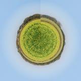 абстрактное собрание Стоковая Фотография RF