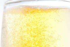 Абстрактное стекло пива Стоковое Изображение