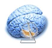 абстрактное усилие тренировок мозга стоковое изображение rf