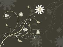 абстрактное флористическое Стоковое Фото