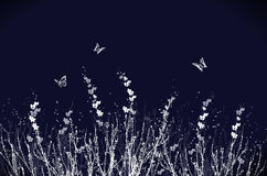 абстрактное флористическое Стоковая Фотография RF