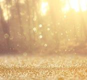 Абстрактное фото света разрывало среди деревьев и светов bokeh яркого блеска фильтрованное изображение и текстурированный Стоковые Изображения RF