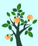 абстрактное фруктовое дерев дерево Стоковые Изображения RF