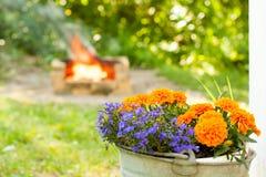 абстрактные бабочки объезжают цветастое лето цветков ощупывания конструкции Стоковые Изображения RF